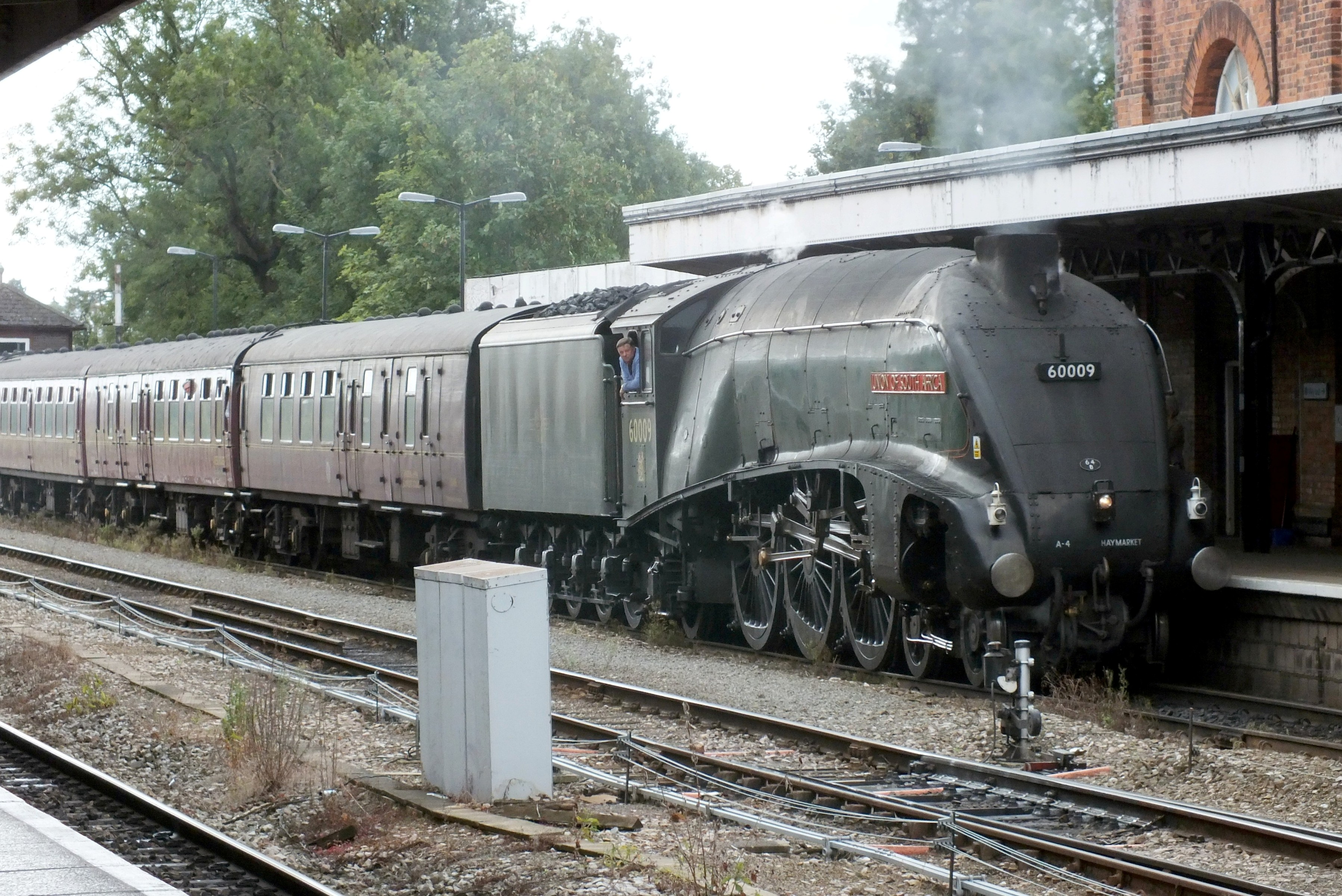 25 August 2018 Shrub Hill 006.JPG