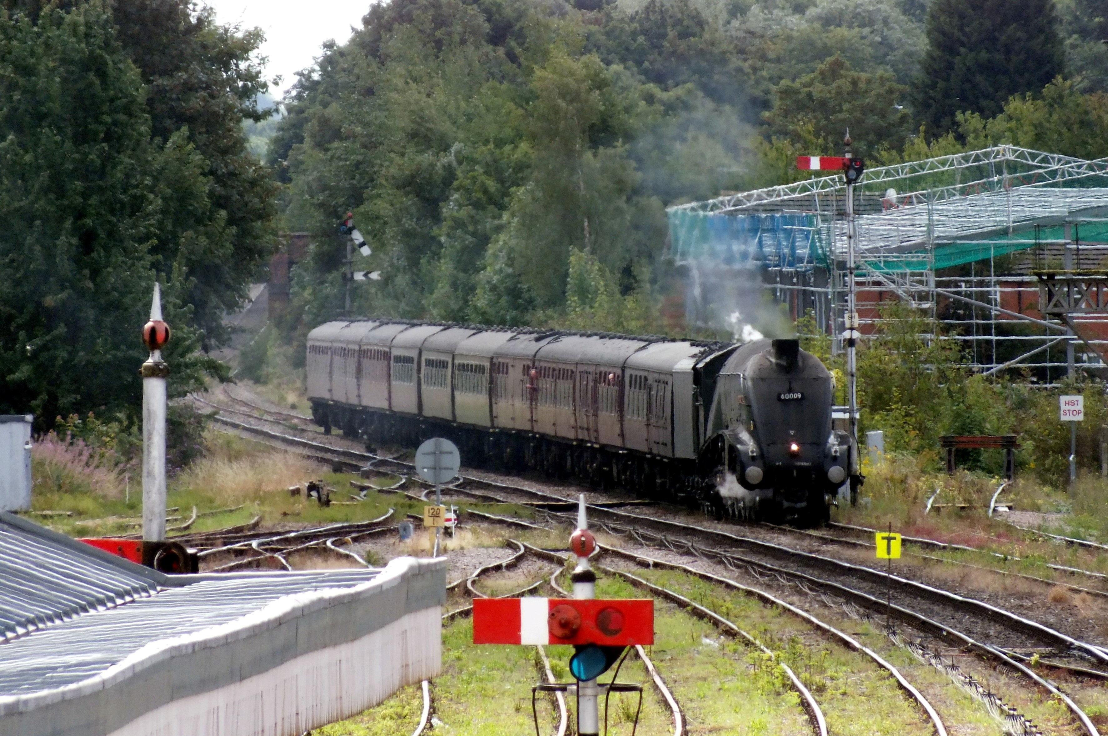 25 August 2018 Shrub Hill 001.JPG