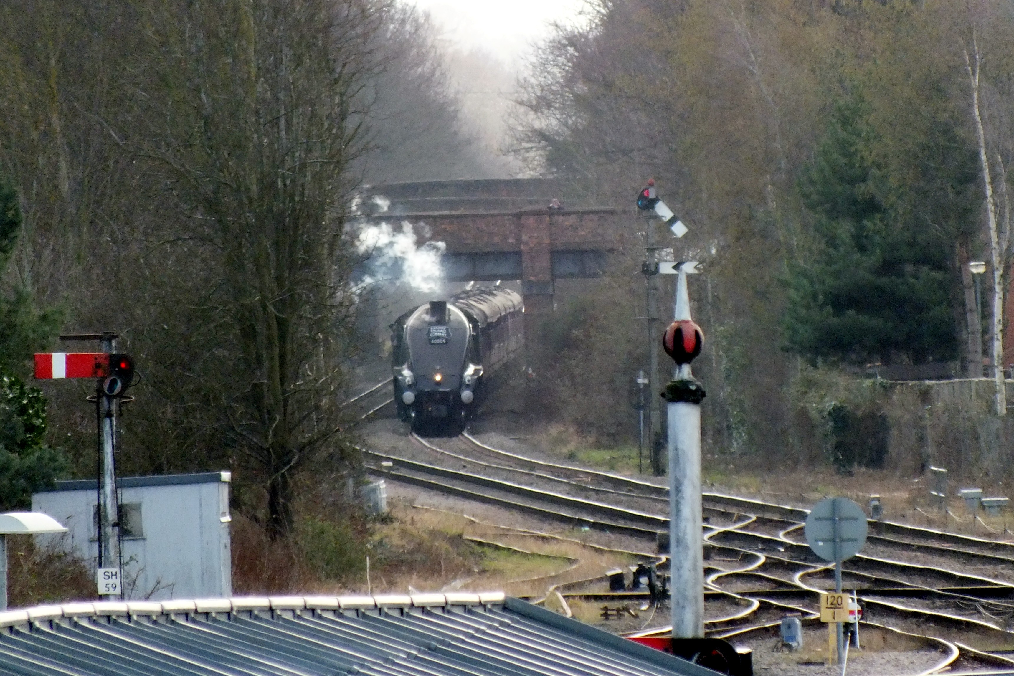 Shrub Hill 16 February 2019 010.JPG
