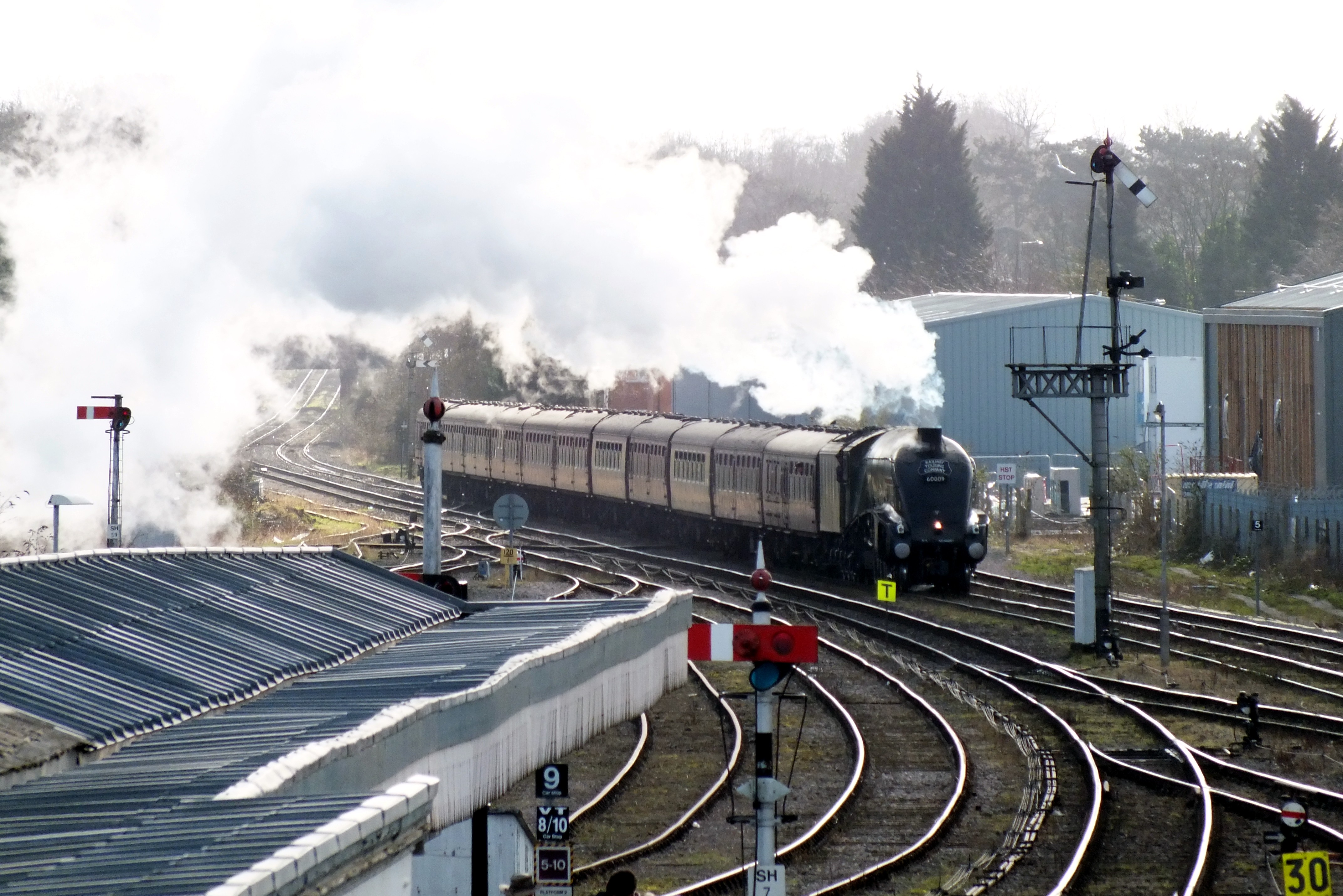 Shrub Hill 16 February 2019 015.JPG