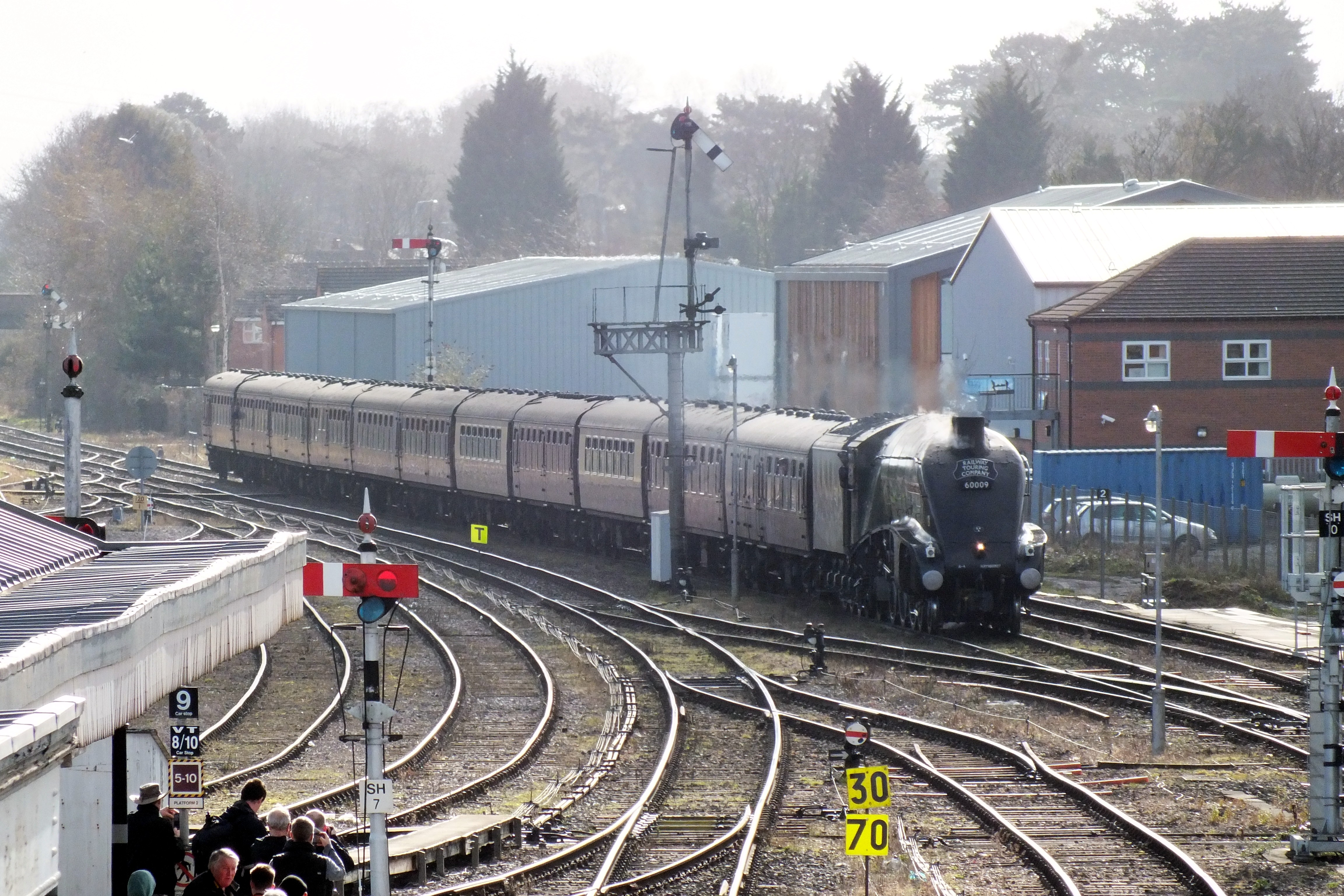 Shrub Hill 16 February 2019 016.JPG