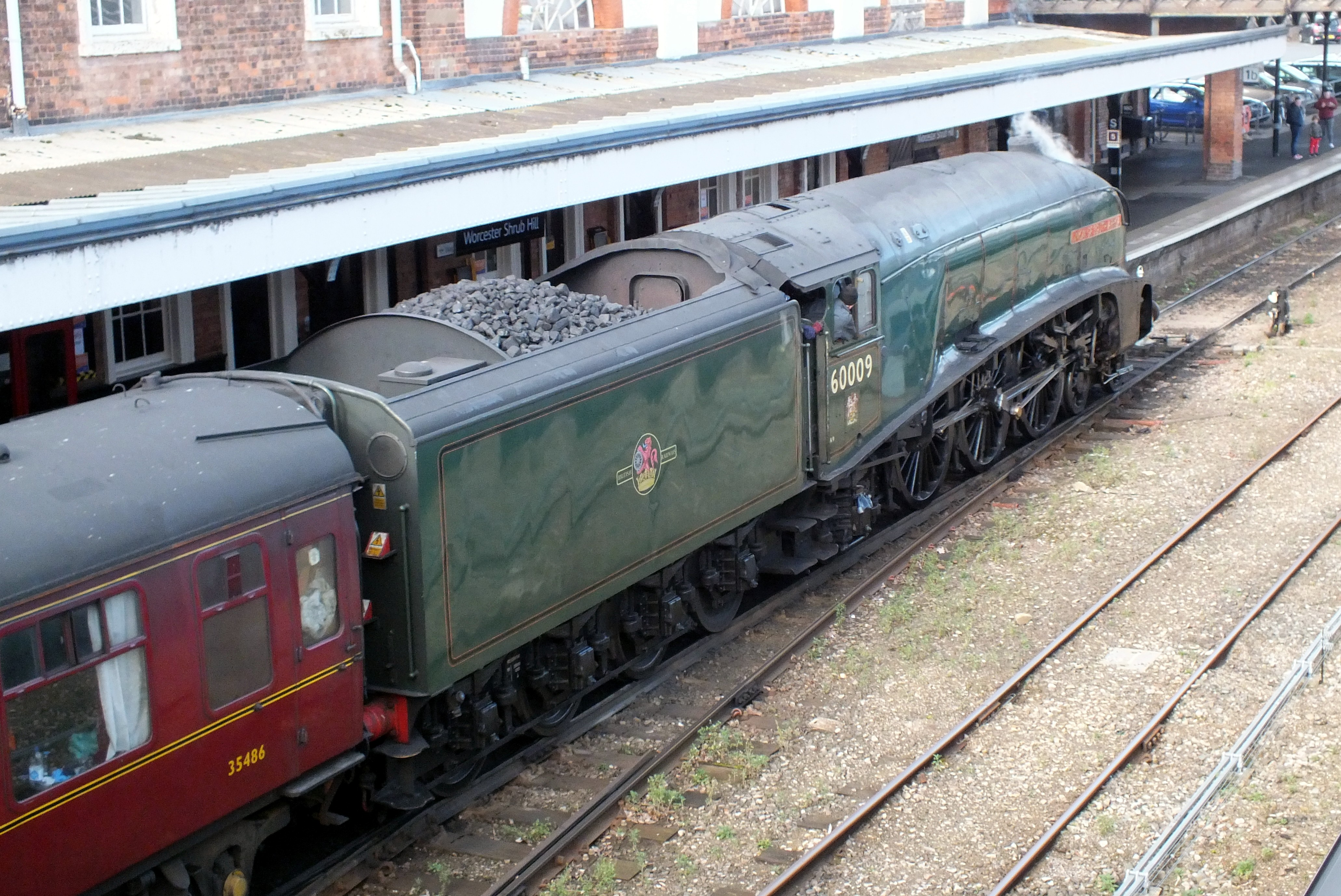 Shrub Hill 16 February 2019 019.JPG