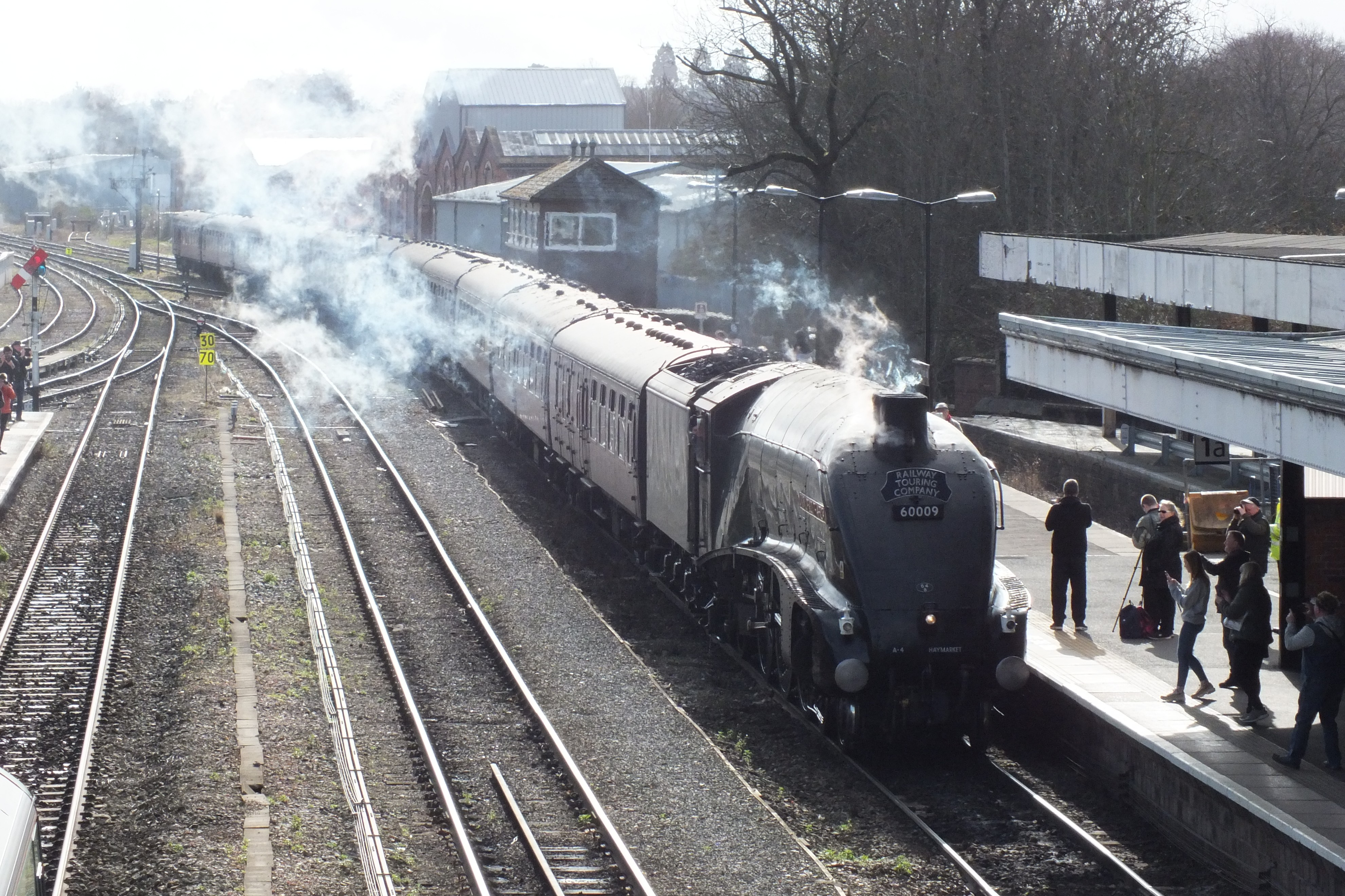 Shrub Hill 16 February 2019 018.JPG