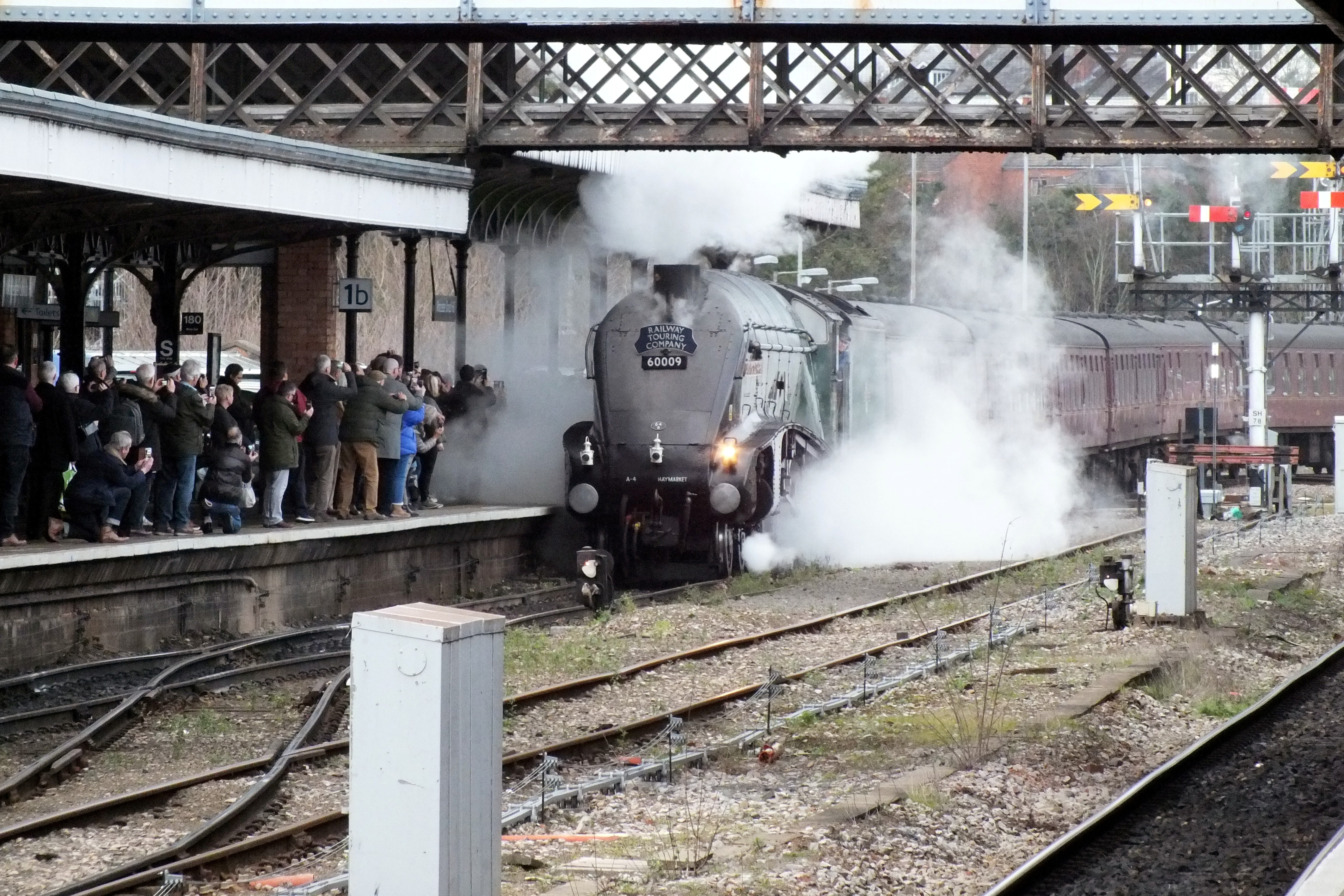 Shrub Hill 16 February 2019 028.JPG