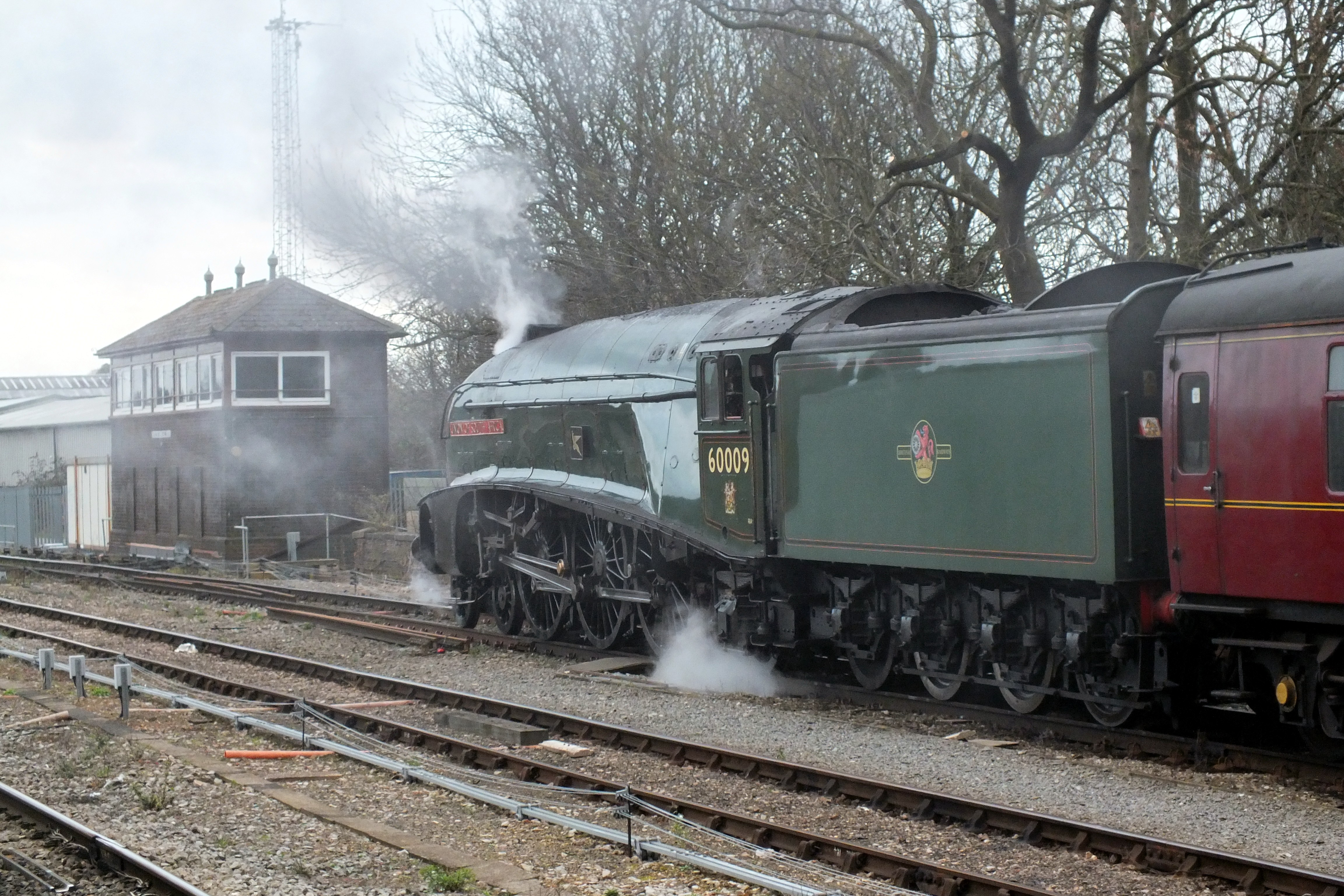 Shrub Hill 16 February 2019 034.JPG