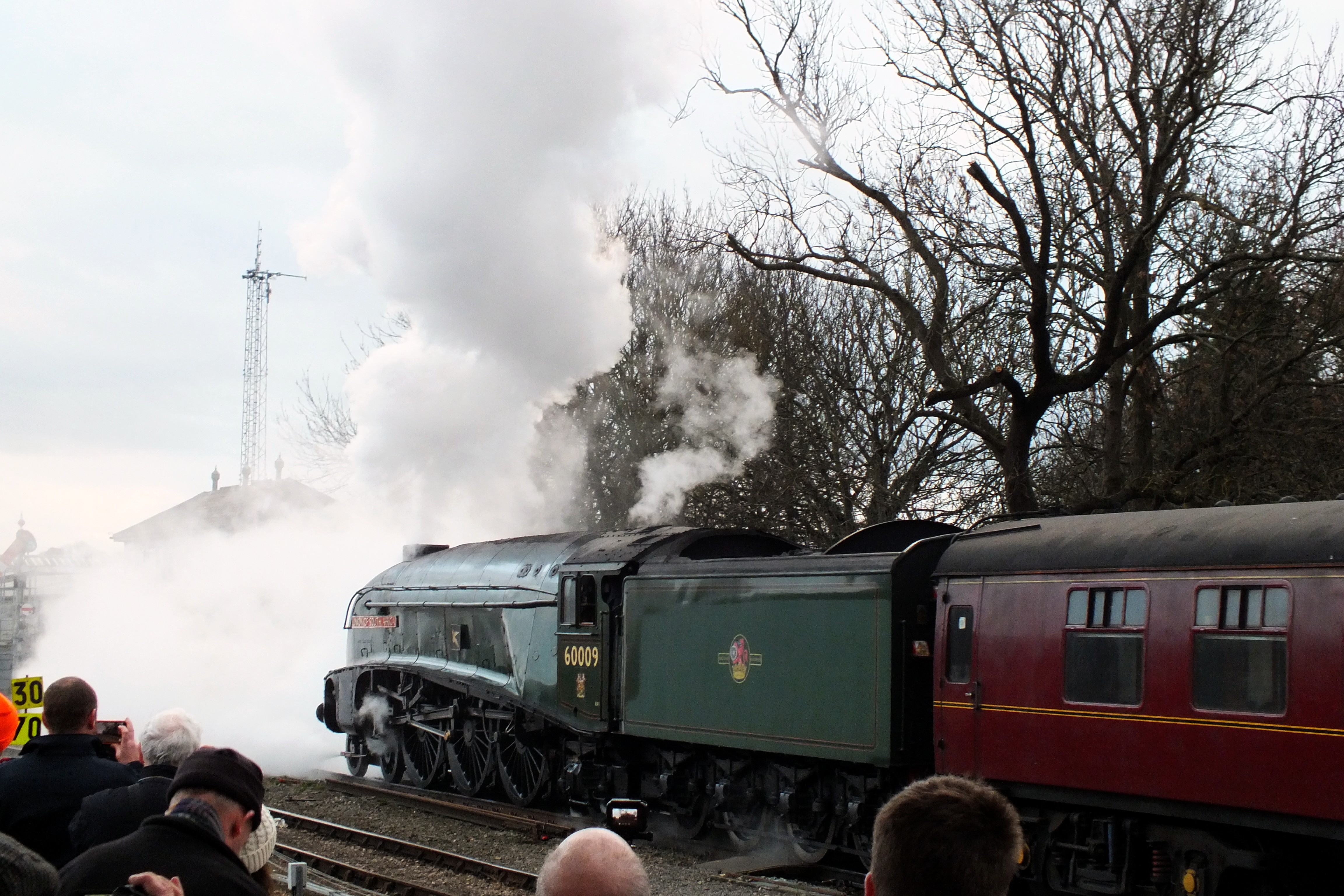 Shrub Hill 16 February 2019 042.JPG
