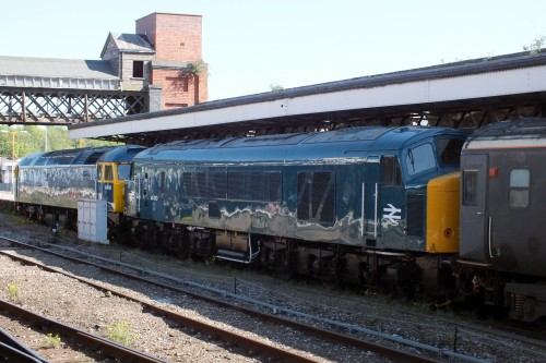 21 May 2019 Shrub Hill 007.JPG