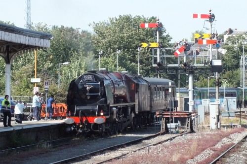 Shrub Hill 24 Aug 2019 003.JPG