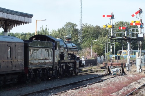 Shrub Hill 24 Aug 2019 011.JPG