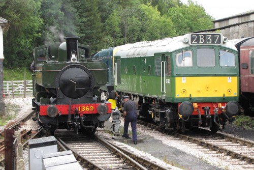 August 23 2011 South Devon Railway 006.jpg